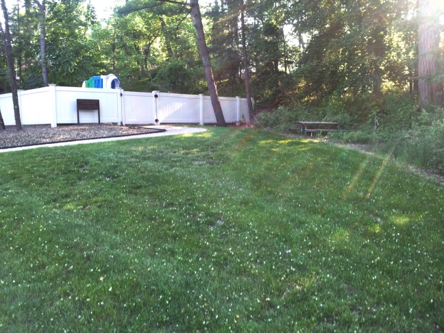 Outdoor Classroom Before photo.jpg